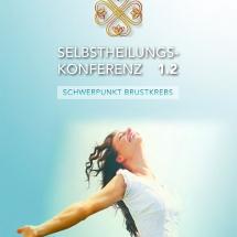 Selbstheilungskonferenz